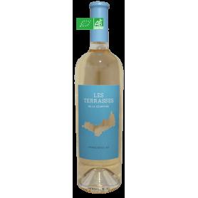 Côtes de Provence 2020 Les Terrasses Domaine de la Courtade
