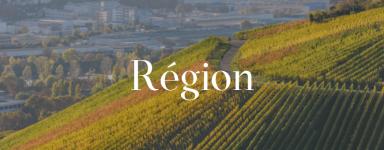Classement par région de notre sélection de vin